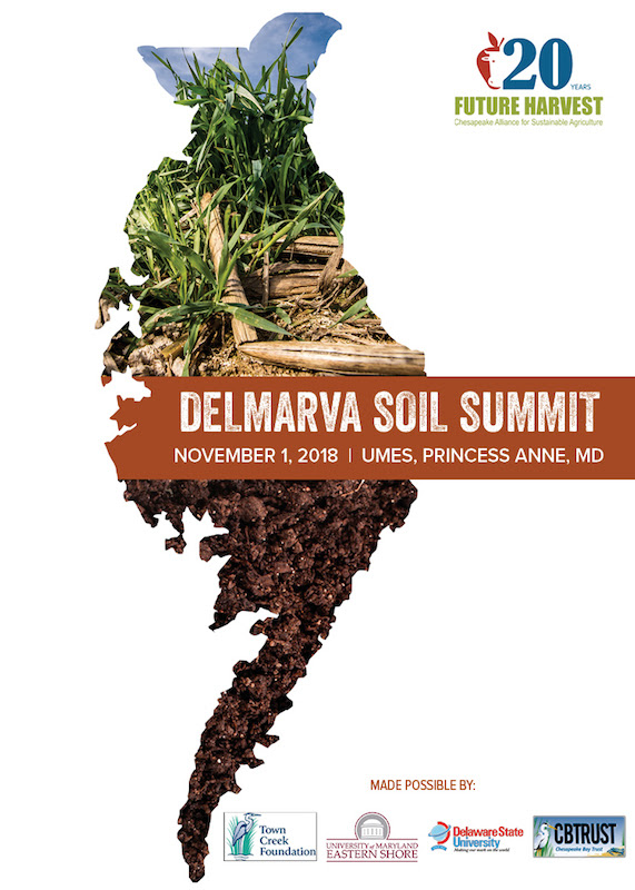 delmarva soil.jpg