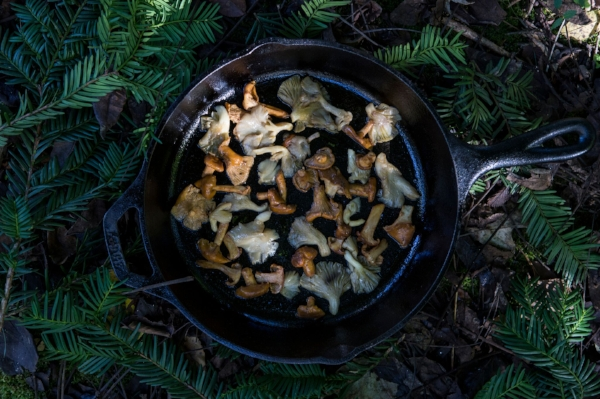 Wild mushrooms add flavor and depth to a traditional sage-centric stuffing.