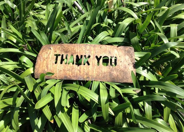 thank-you-1243804 in grass.jpg