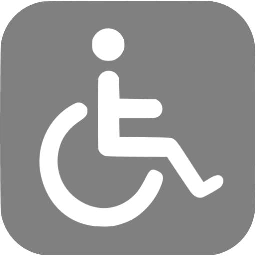 ADA Grey Wheelchair.jpg