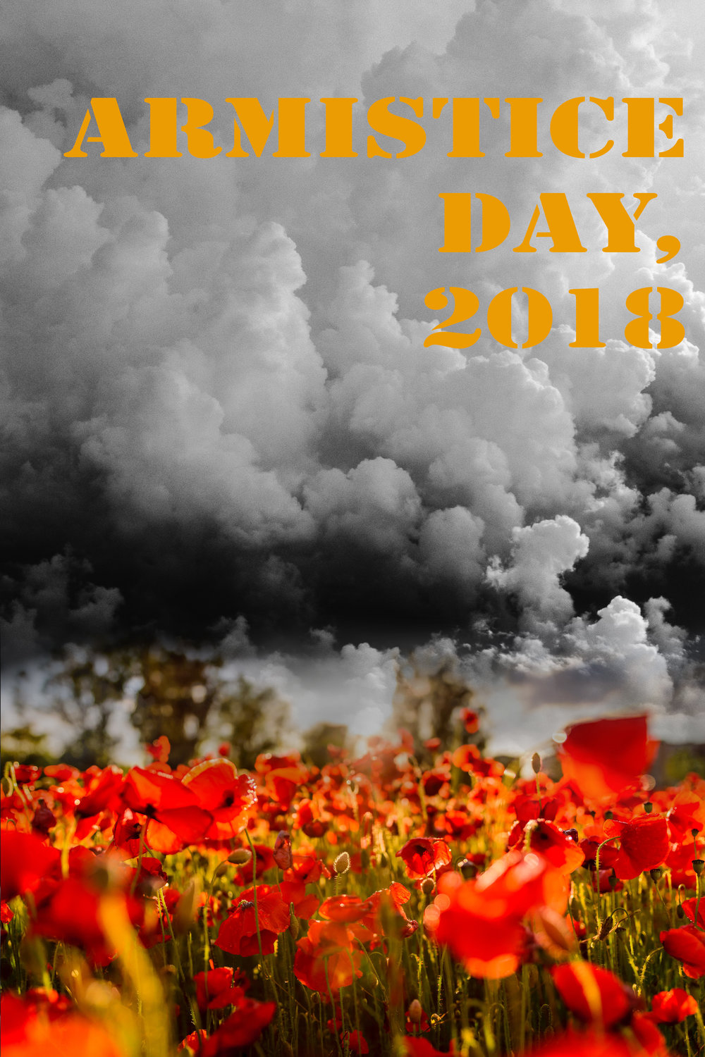 Image derived from Unsplash.com, where all photos published on Unsplash can be used for free. You can use them for commercial and noncommercial purposes. You do not need to ask permission from or provide credit to the photographer or Unsplash. Image from Unsplash was modified by Frontline Arts interns for use in our Armistice Day, 2018 publications.