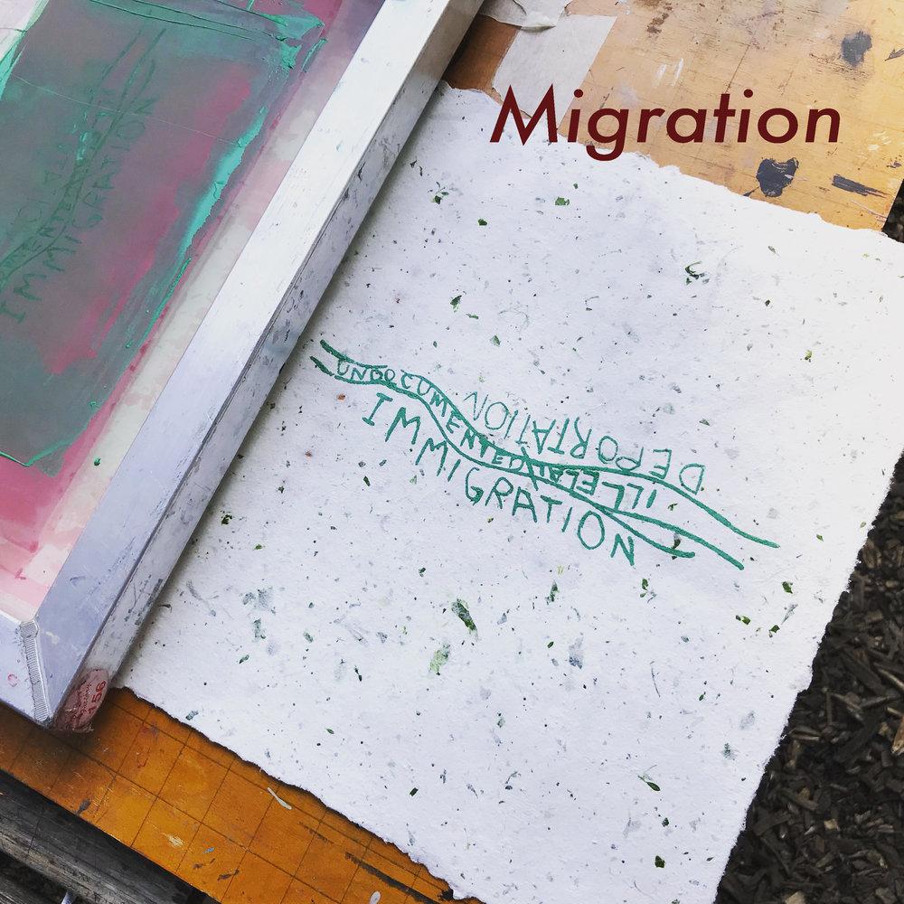 Migration image 1.jpg