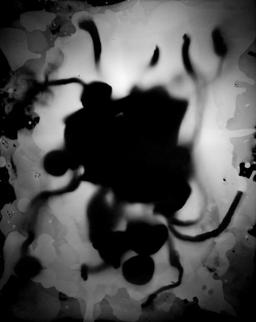 "Yog Sothoth (Outer God), 2013.   8x10"" silver gelatin paper negative"