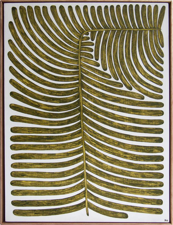 Polypodium GlycyrrhizMHwebsite.jpg