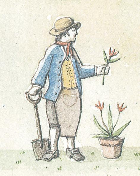 gardener.jpg