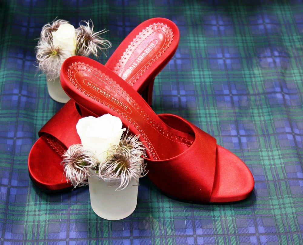 shoes-455682_1920.jpg