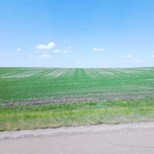 marysia-champ-drumheller-roadtrip-inspiration-prairie-landscape-sky