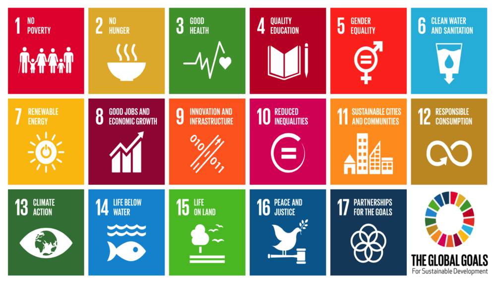 ViVA strives to support the Sustainable Development Goals of the UN through our projects