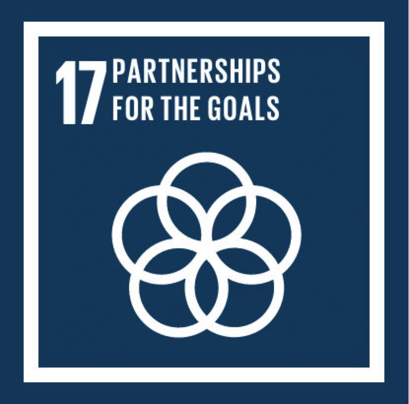 SDG-17.png