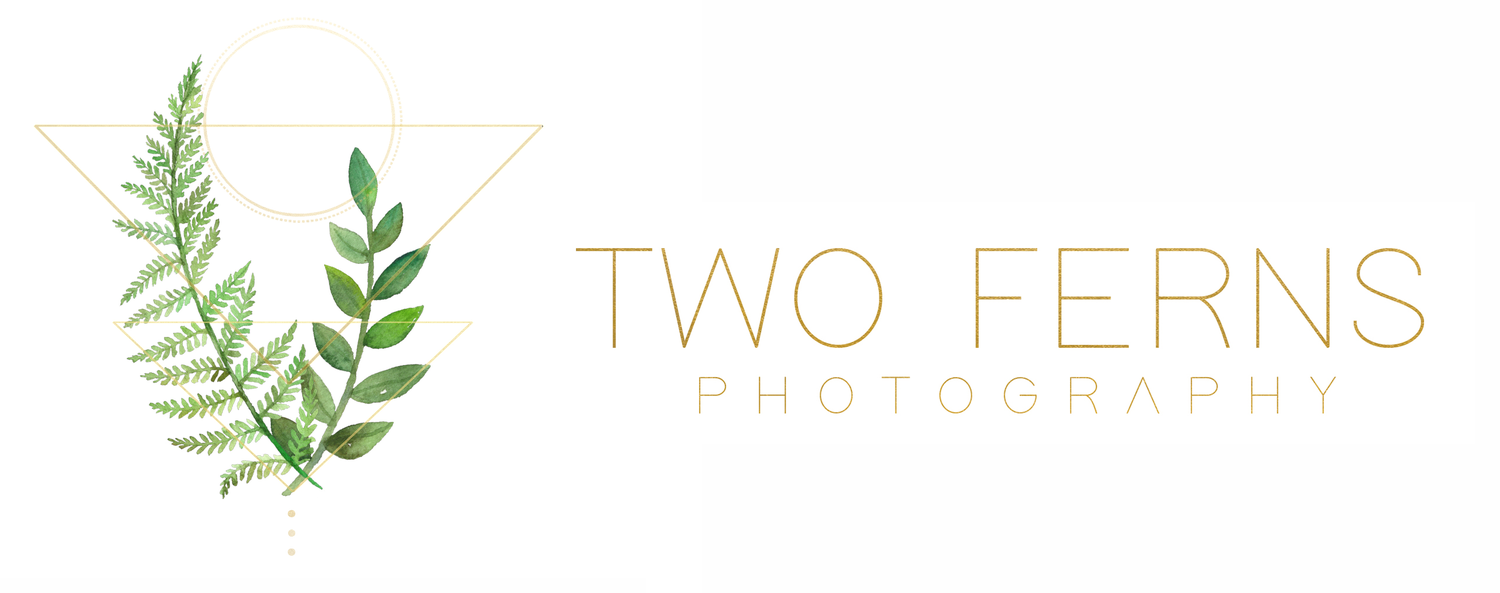 Two Ferns Photography \\ Lifestyle Wedding Portrait Photographer \\ Southwest FL