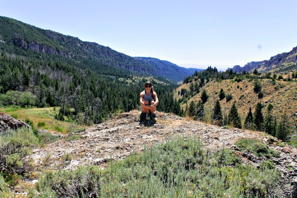 Bighorn National Forest,  summer 2014