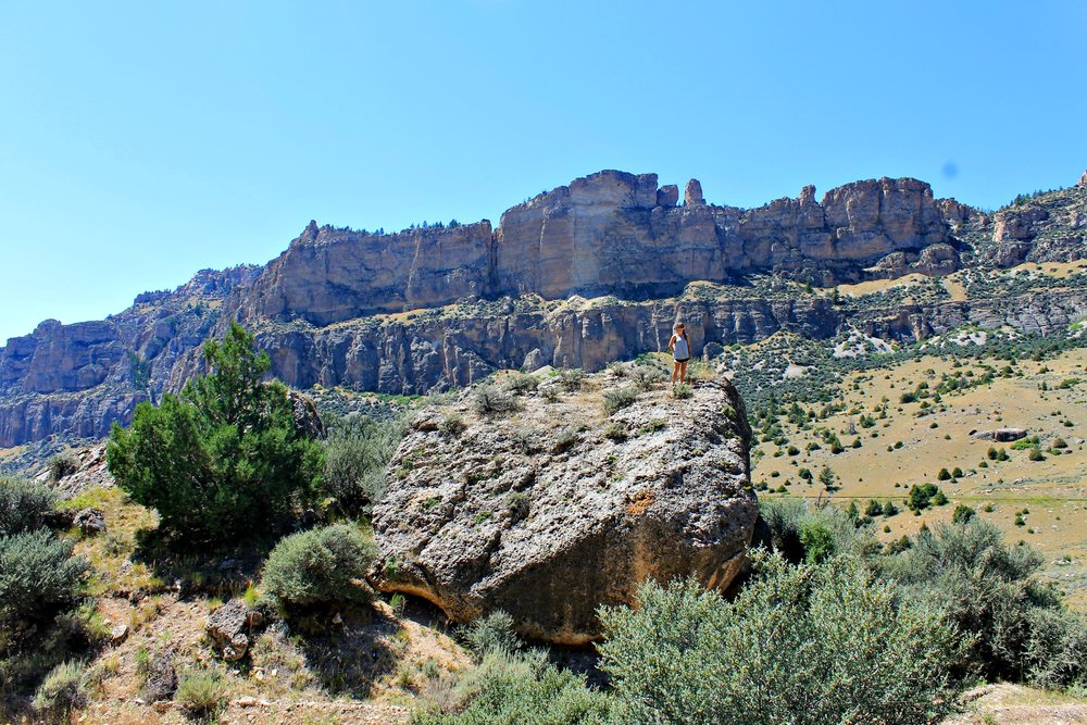 Bighorns National Forest, summer 2014