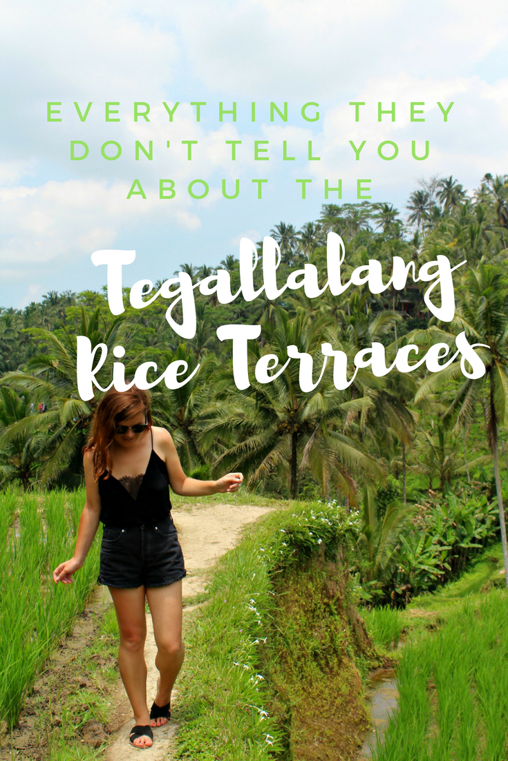 Everything they don't tell you about the Tegallalang Rice Terraces (1).png