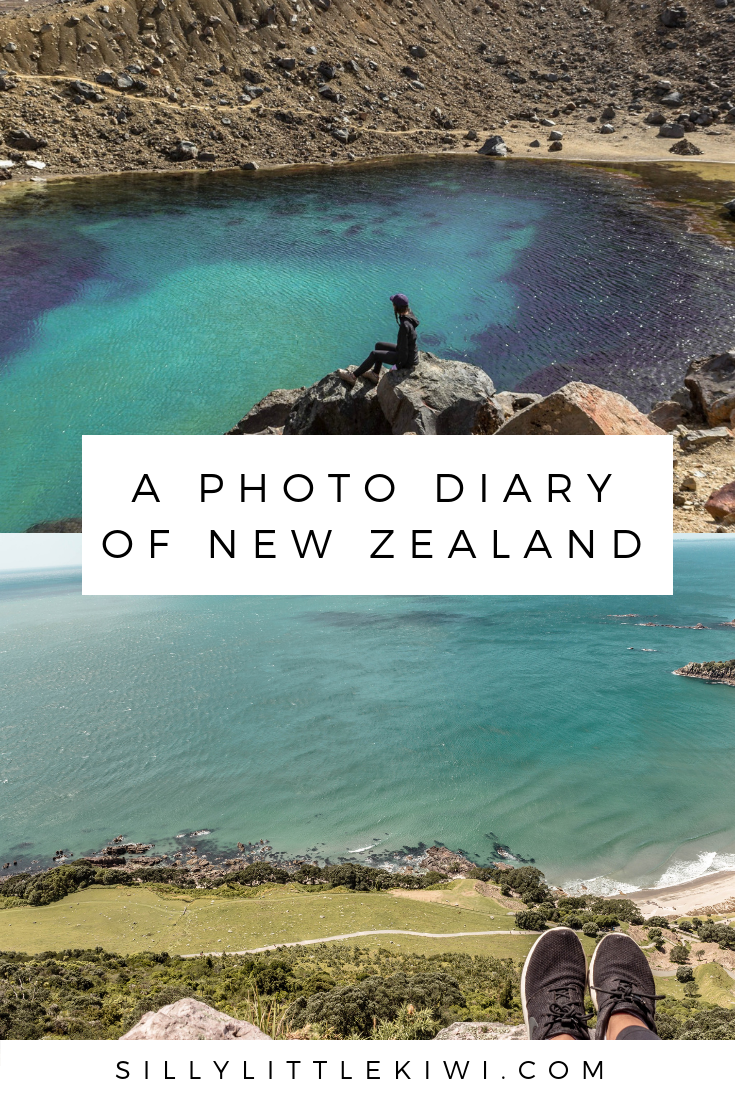 a photo diary of new zealand in november