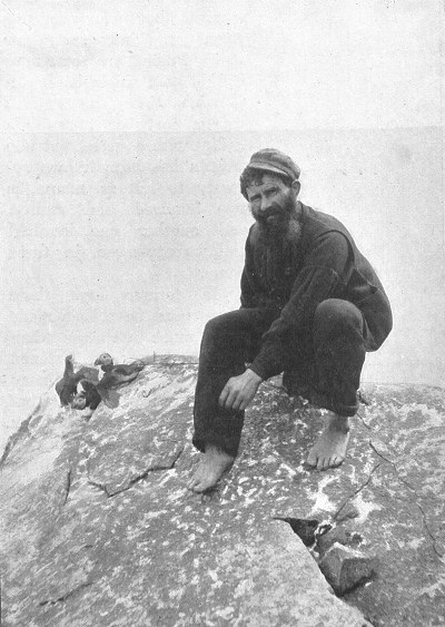 A St Kildan man hunting puffins. Late 19th century.