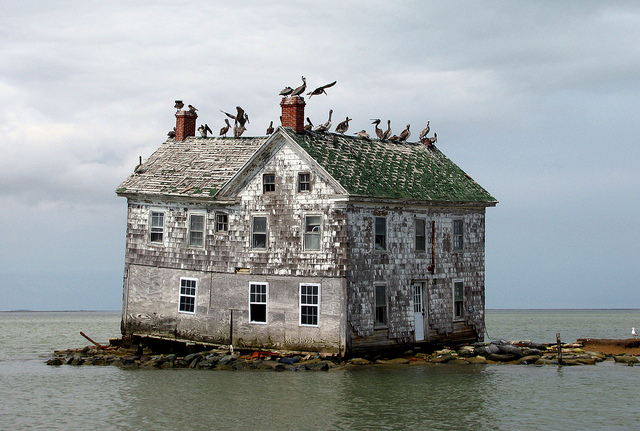 The_last_house_on_Holland_Island_baldeaglebluff_Flickr
