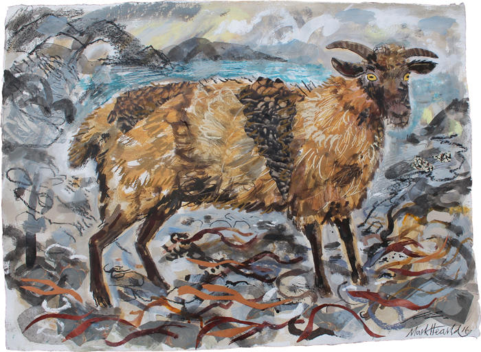 The Shetland Ewe.jpg