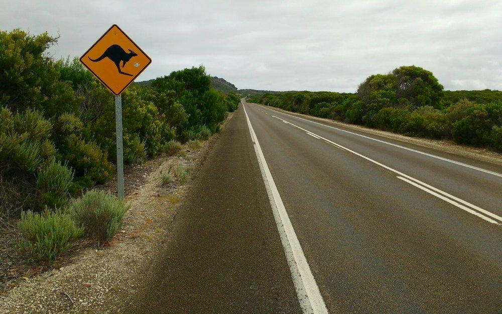Malachy Tallack Kangaroo Island Australia