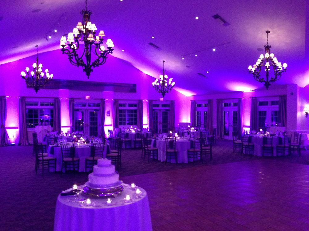 UL Purple.jpeg