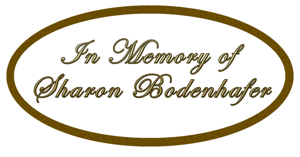 Sharon Bodenhafer logo.jpg