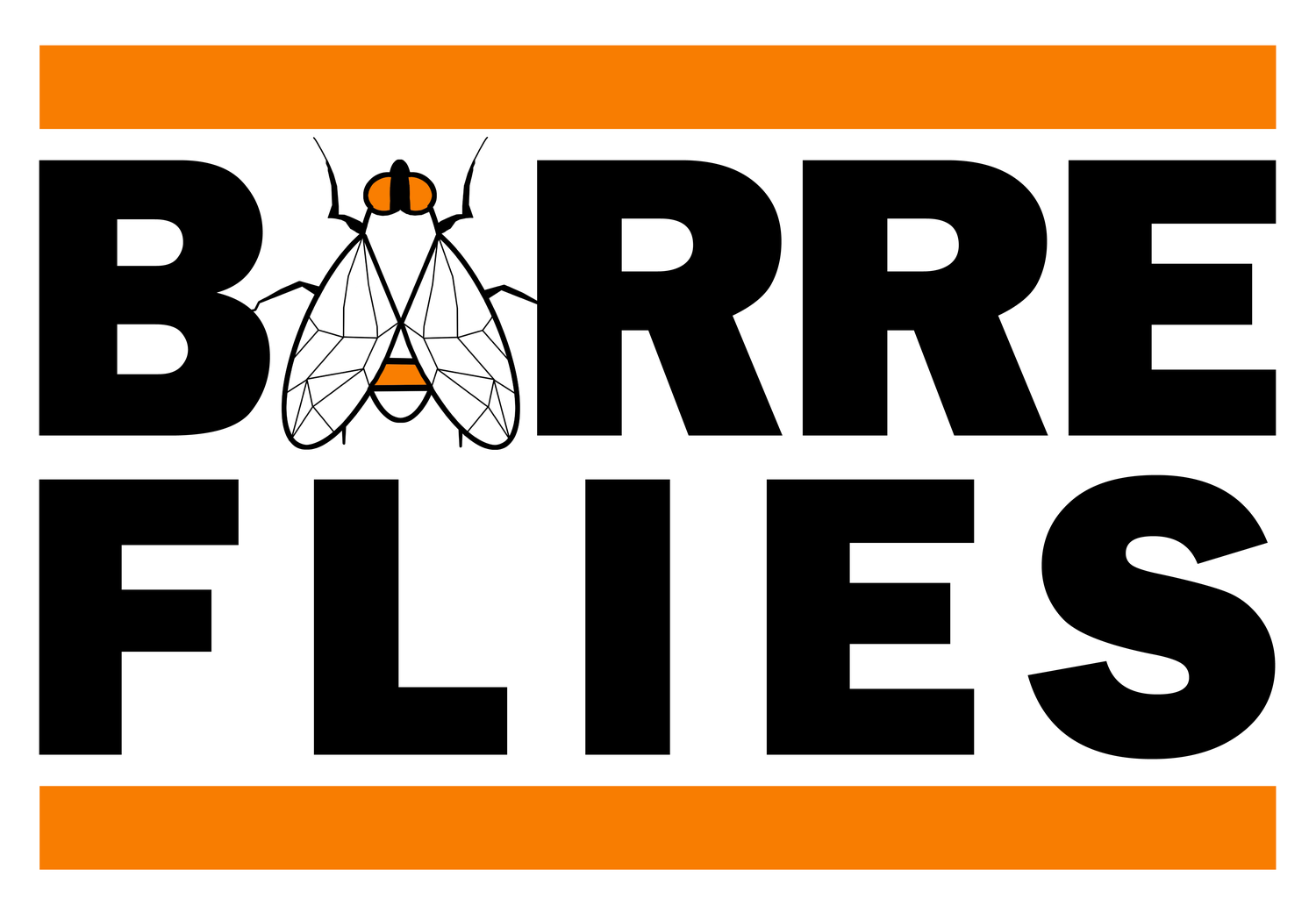 Barre Flies (formerly Barre Studio LTD)