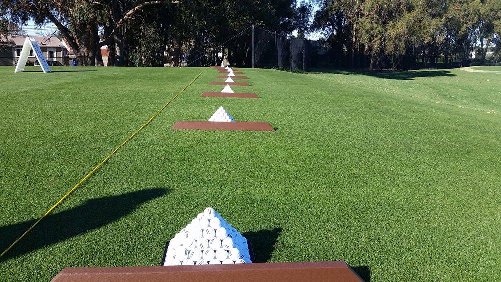 grass tee shot.jpg