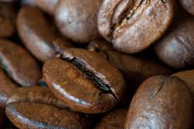 Coffee Roasters From South Florida