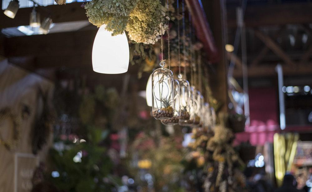 Pendulum Magazine - Our Little Flower Company