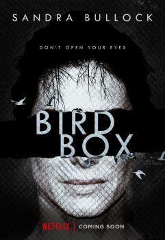bird_box__2018____poster_by_netoribeiro89-dbr44bz.jpg