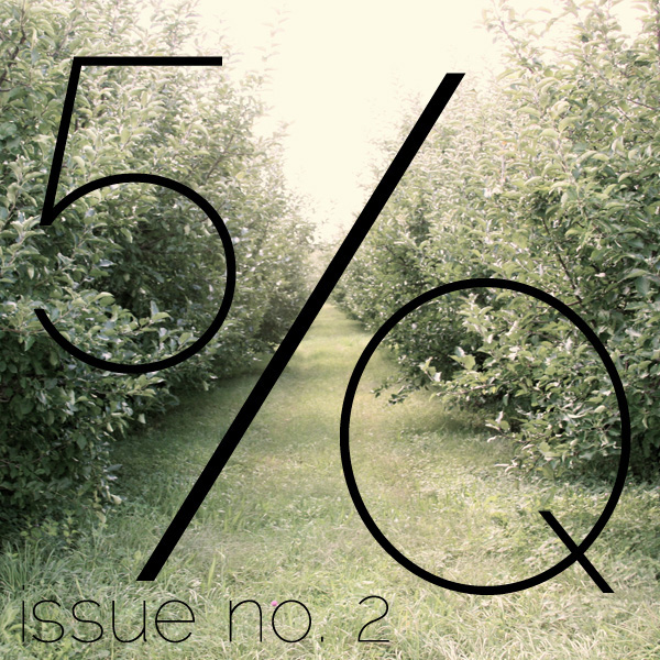 GHOST SKIN - A short story about family and grieving, published in Five Quarterly 2.