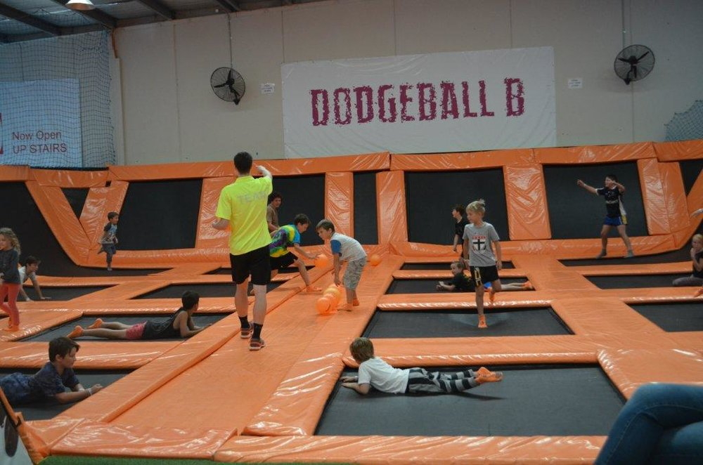 dodgeball website.jpg
