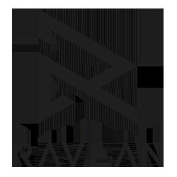 🔗  ravean.com