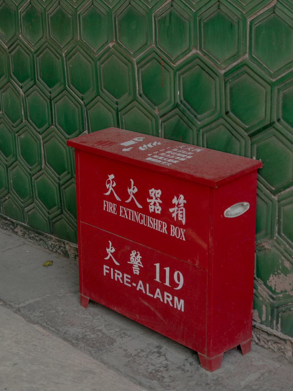 leda costa beijing 6.jpg