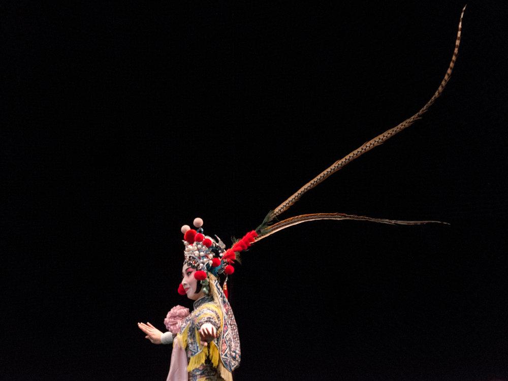 Leda Costa Chinese Opera 7.jpg