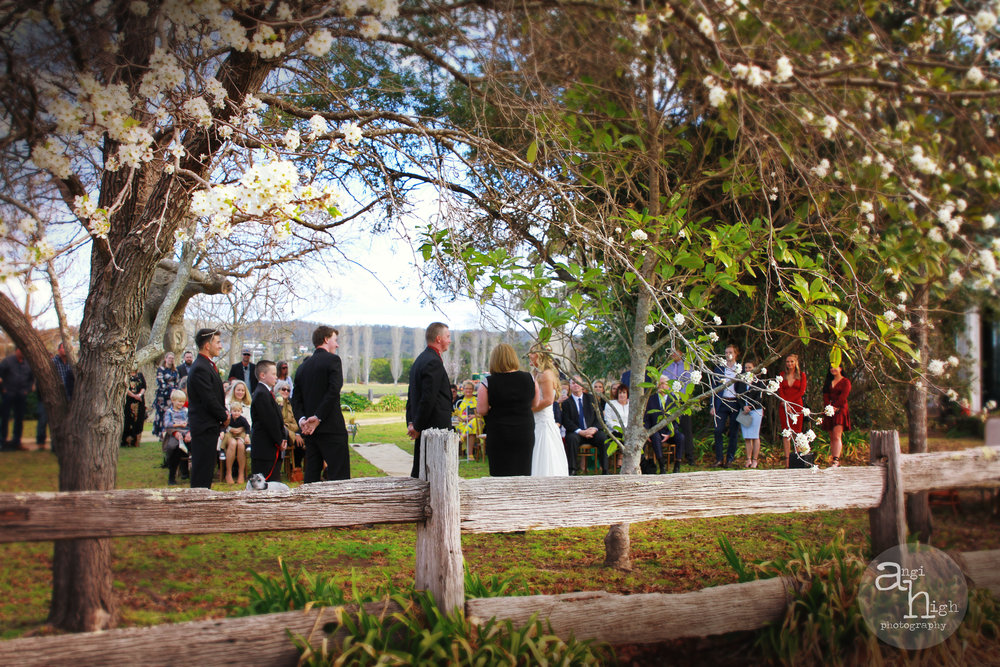 T&P wedding 03.jpg