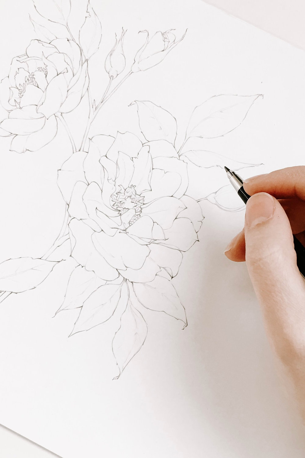Join me on this 5 day journey to master flower drawing! I'm going to teach you how to draw realistic flowers by sharing 5 of my favorite secrets with you through video tutorials and a supportive community! #floraldrawingchallenge #howtodrawflowers #drawingtutorials