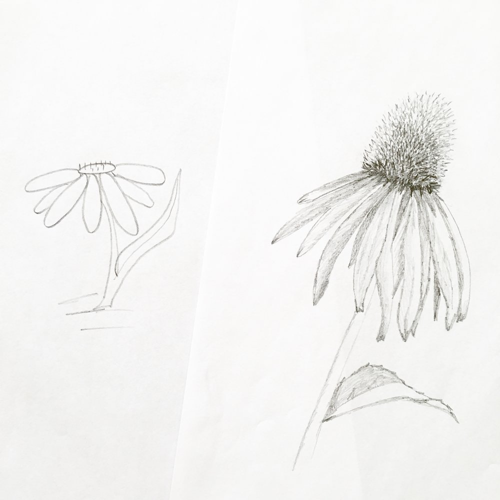 Learn to draw realistic flowers - I can help your artwork go from (Left) to (Right) in LESS than ONE WEEK!  Join my free drawing challenge to pick up 5 of my favorite drawing secrets. Blusheddesign.com/flower-drawing #flowerdrawing #floralillustration #learntodraw #howtodraw #drawingturorial