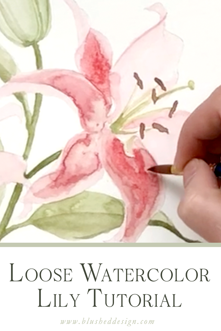 Want to learn how to create beautiful, loose watercolor lilies?  Especially the famed Stargazer Lily?  This video is for you!  Watch me mix the paints and start the loose layers of this beautiful watercolor painting. #watercolortutorial #watercolorlily #howtowatercolor #howtopaint #watercolorlilytutorial