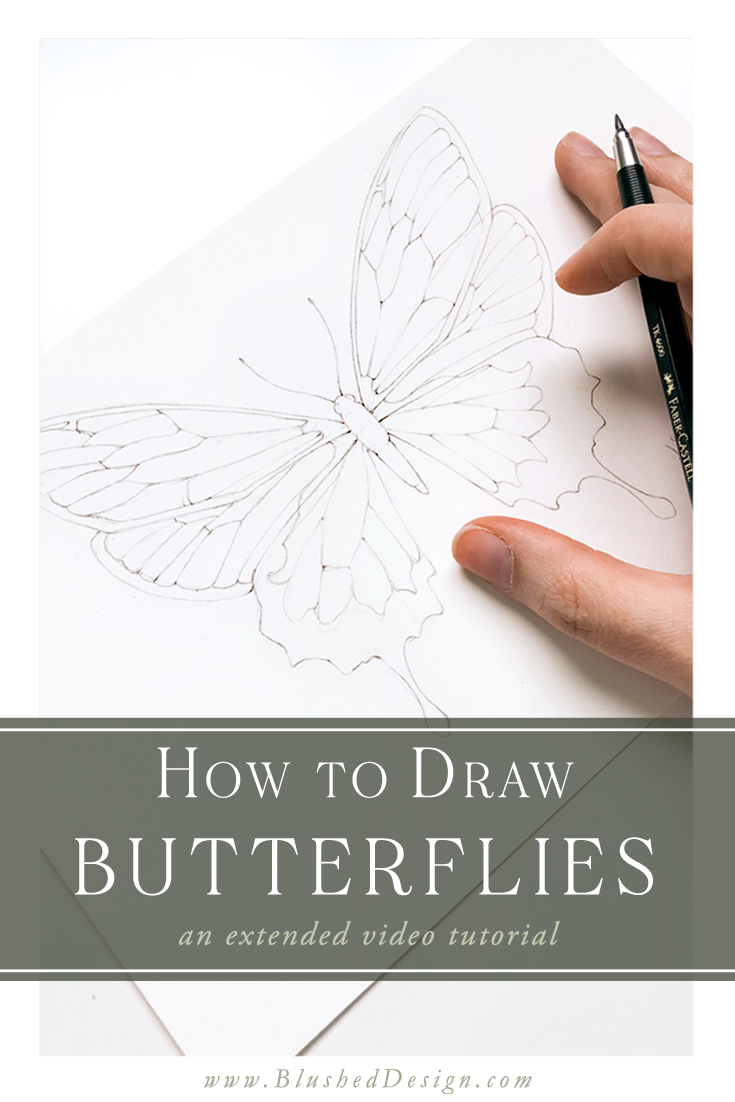 How To Draw Butterflies Single Video Tutorial Blushed Design