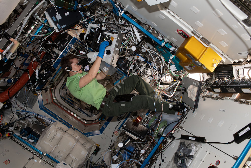 Anne McClain takes photographs for the Protein Crystal Growth-16 experiment, which was brought to the outpost aboard the NG-10 Cygnus spacecraft. Credit: NASA