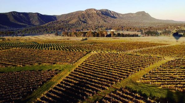hunter-valley-private-tour.JPG