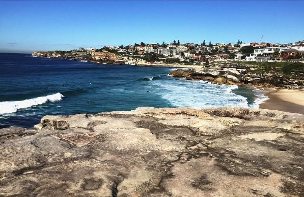 Experience True Coastal Beauty on the Bondi to Coogee Walk