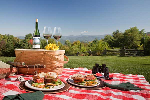 blue-mountains-private-tour-packed-lunch.jpg