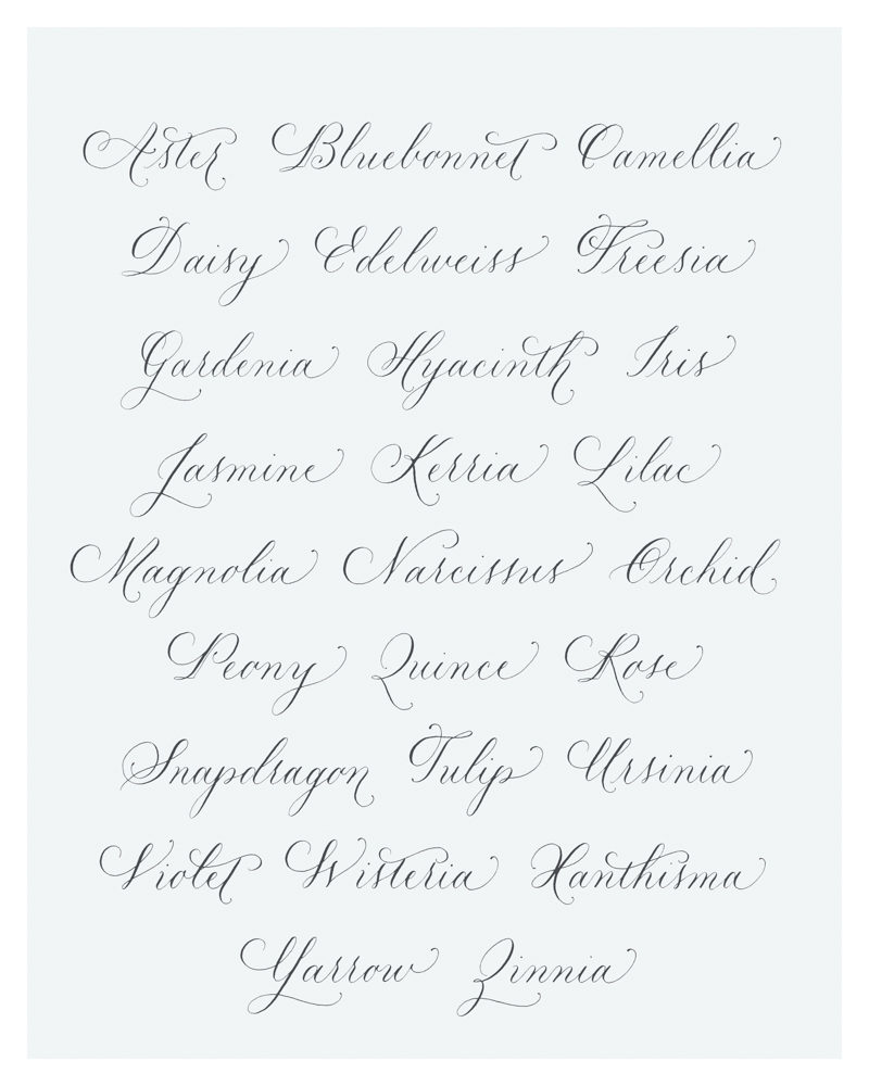 Botanical Alphabet by Lisa Ridgely--one of my most admired exemplars when I was starting (trying) to develop my freeehand style. (Photo from Lisa Ridgely)