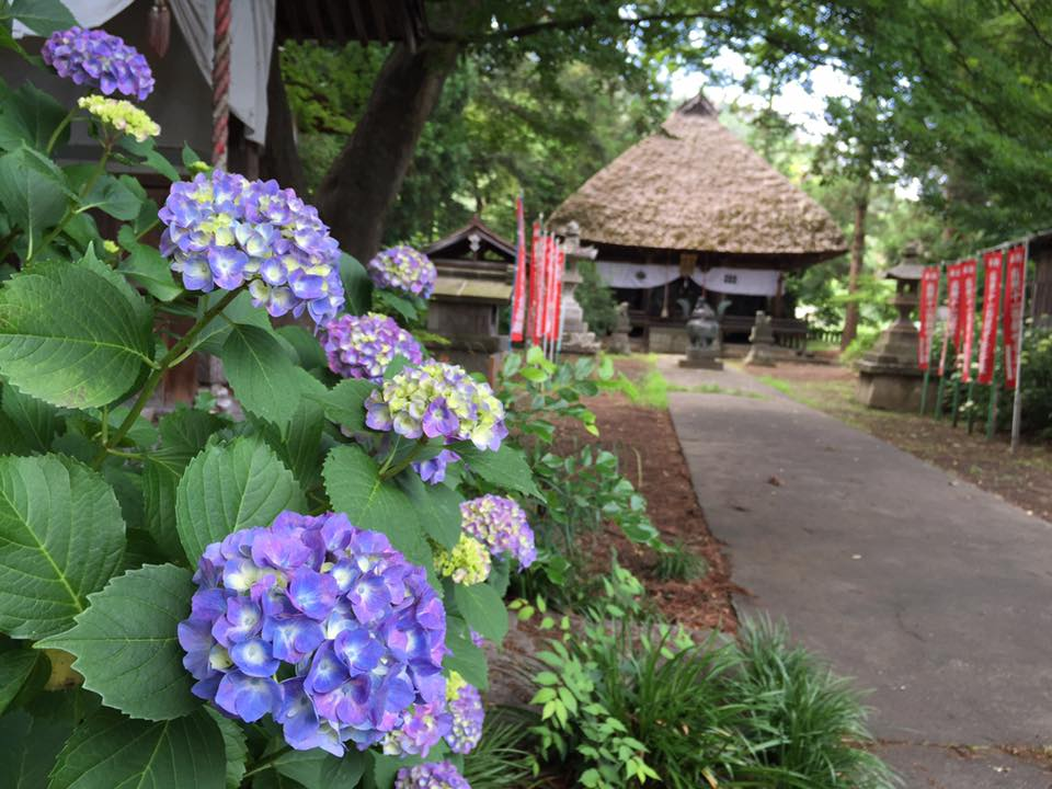 茅葺屋根の智識寺 Thatched-roof Chishiki-ji Temple