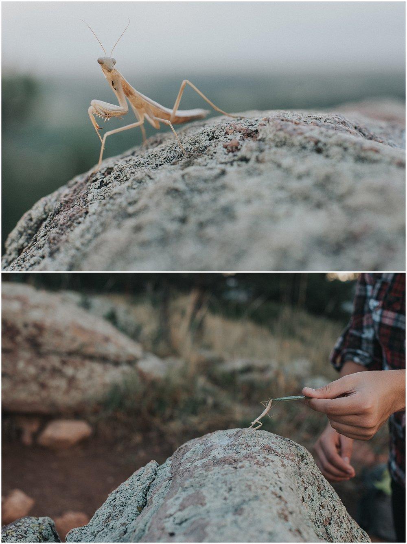 boulder-colorado-family-photos_0015.jpg