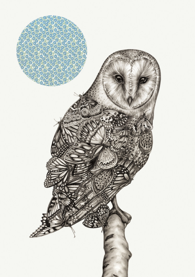 Lauren-Mortimer-Owl-And-Butterfly.png