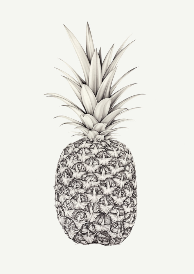 Lauren-Mortimer-Papillon-Pineapple.png