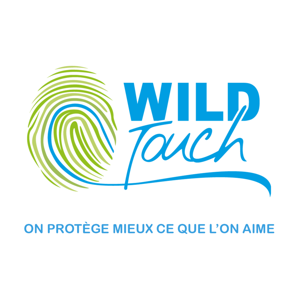 Logo_Wild-Touch.png