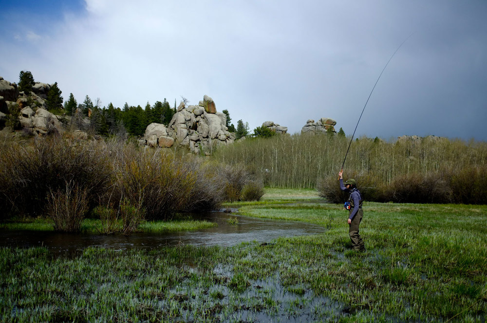 Small meadow streams are perfect for brook trout and tenkara.